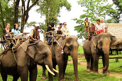 one month vietnam itinerary tay nguyen central highlands elephant village
