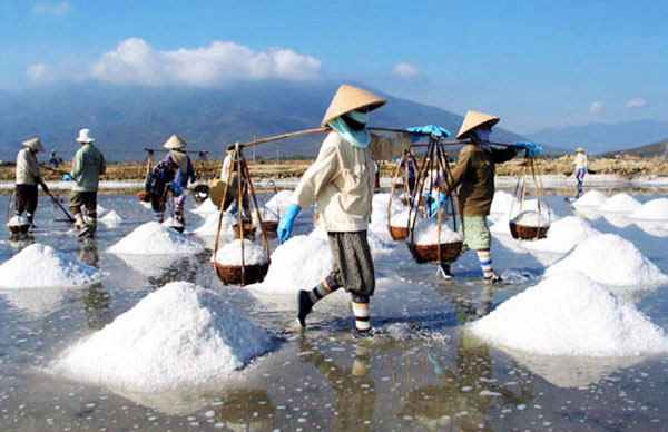 Amazing Views of Salt Fields in Vietnam | i Tour Vietnam Blogs