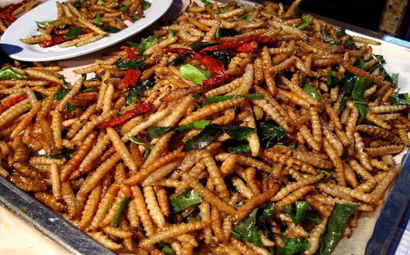 Exotic Foods in Hanoi | i Tour Vietnam Blogs